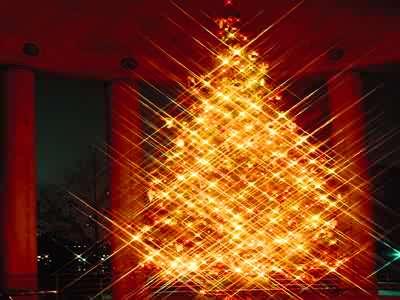 Christmas Tree Jigsaw Puzzle - JigZone.com