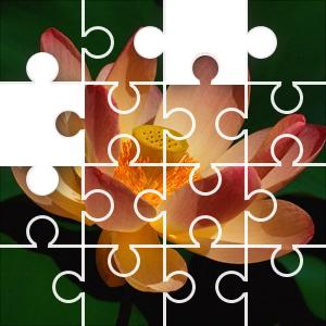 Lotus Flower Jigsaw Puzzle Jigzonecom