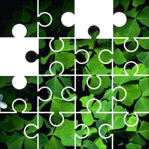 Green Jigsaw Puzzle - JigZone.com - photo #50