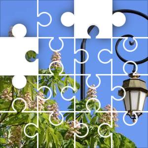 Chestnut Jigsaw Puzzle - JigZone.com - photo#36
