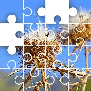 Mountain Plants Jigsaw Puzzle - JigZone.com - photo #42